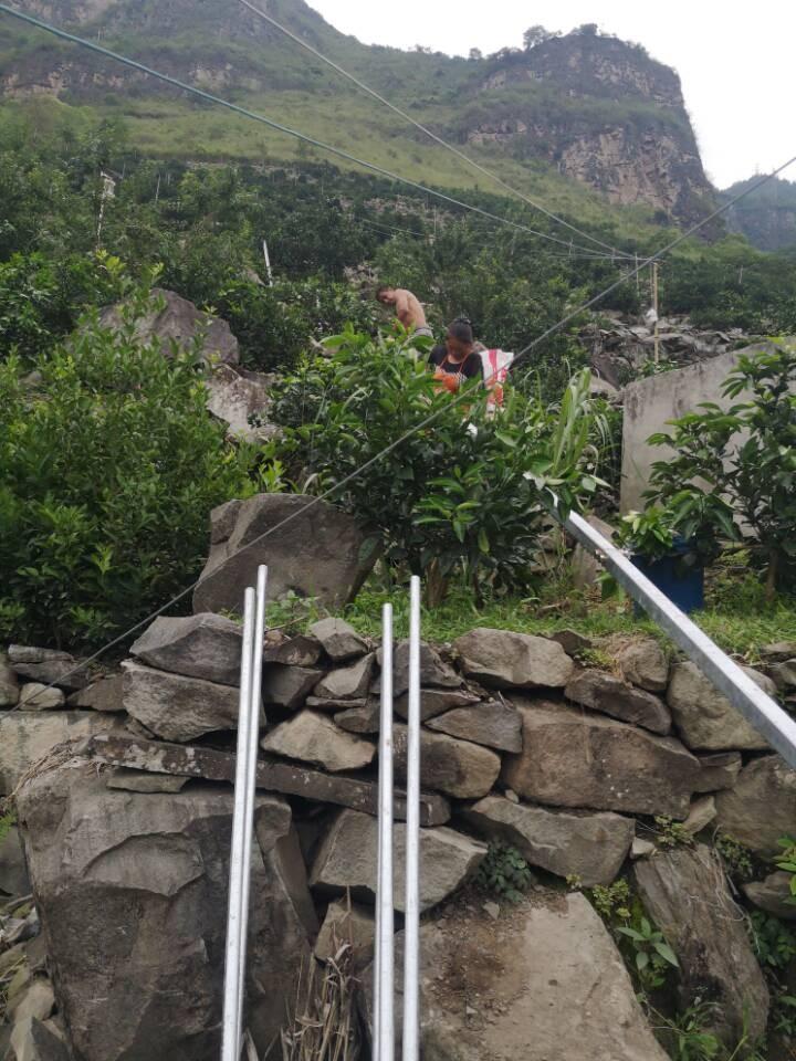 重庆山地果园轨道运输机_解决山地物资运输难问题!