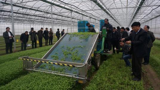 农业农村部关于加快推进设施种植机械化发展的意见
