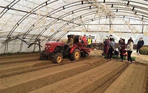 农业农村部:将更多设施种植装备纳入补贴范围,扩展标准化大棚骨架补贴试点范围