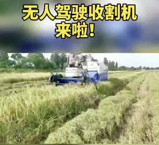 广东智慧农业再添重器!无人收割机成早稻种植户新宠