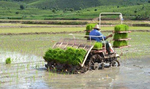 湖南省关于2020年第二批农机购置补贴机具补贴额和产品归档结果的通告