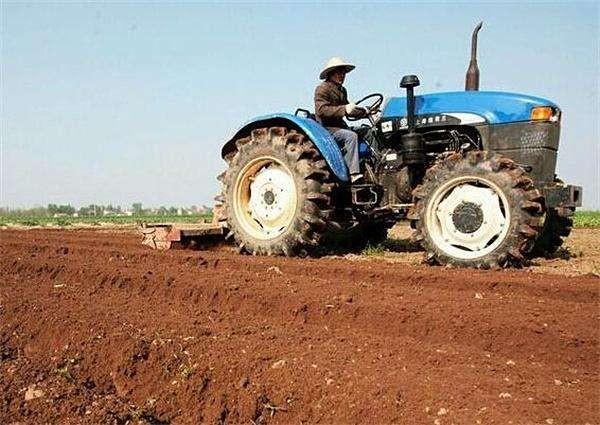 新疆农民专业合作社年均增加逾2000家