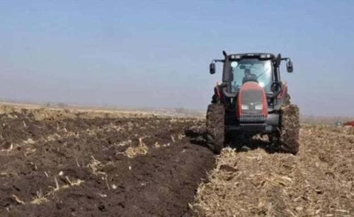 東北地區玉米春旱秋防耕作整地技術意見