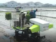 中联重科2ZPY-13A水稻有序抛秧机